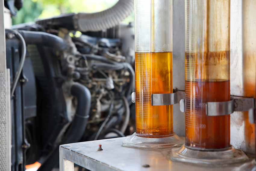 Oil palm biofuel biodiesel in tubes